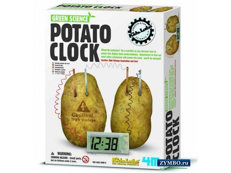 Картофельные часы