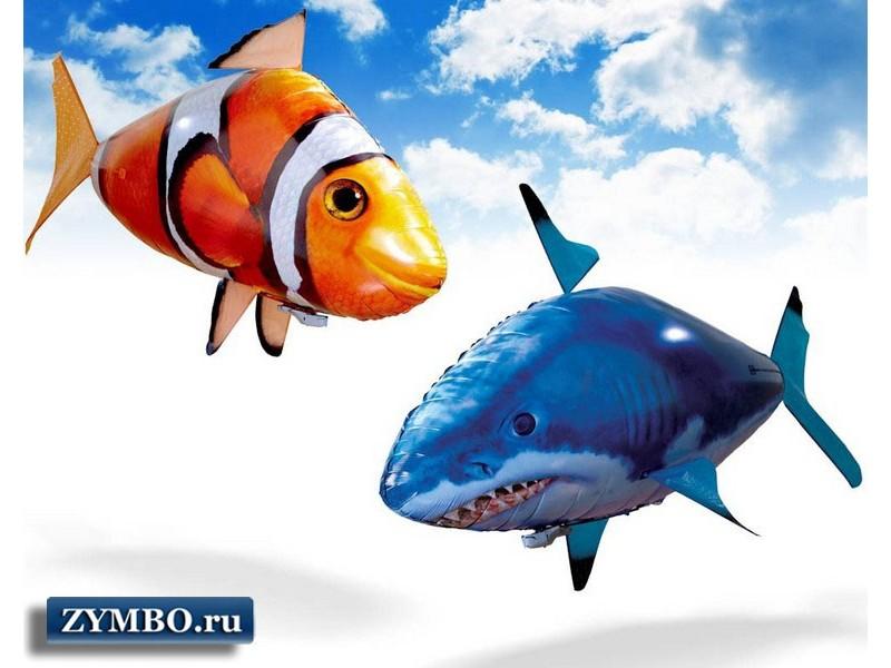 Летающая акула Air Swimmers