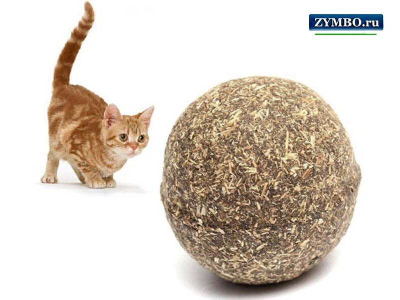 Кошачья мята - шарик
