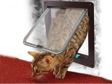 Дверь для кошки