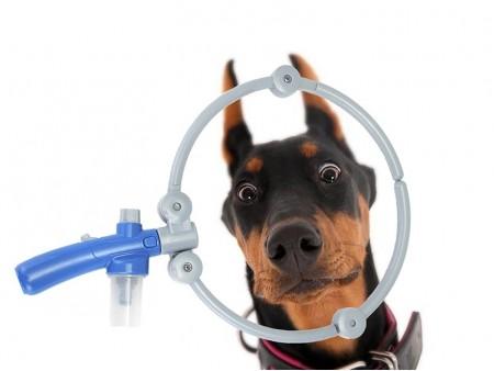 Круговой душ для собак