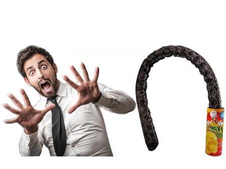 """Прикол """"Выпрыгивающая змея"""""""