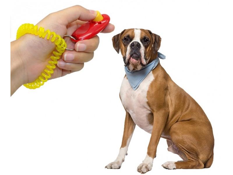 Кликер для дрессировки собак